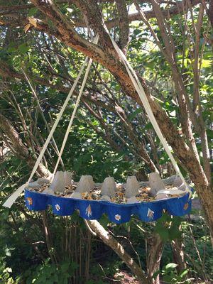 Mangeoire pour les oiseaux en carton d'oeufs